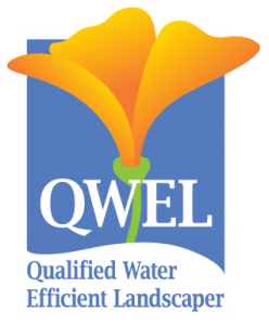 qwel-logo-transparent-248x300